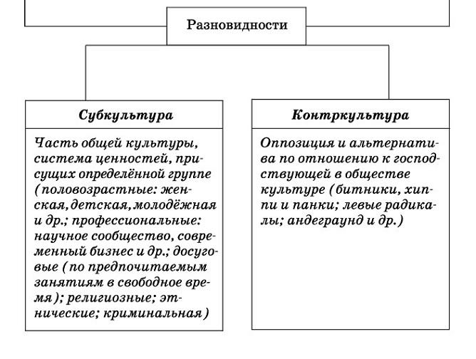 разновидности культуры обществознание